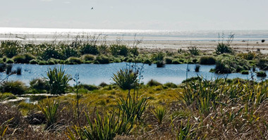 Waikanae Estuary, Kapiti District. Photographer: Jeremy Rolfe.