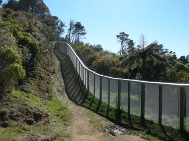 Predator proof fence surrounding Karori Sanctuary, Wellington.Photographer: John Sawyer.